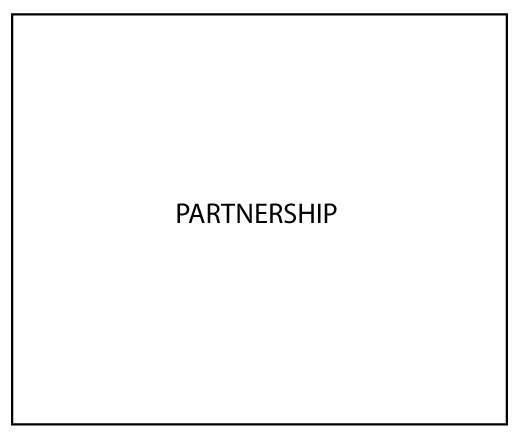 partnership-immagine